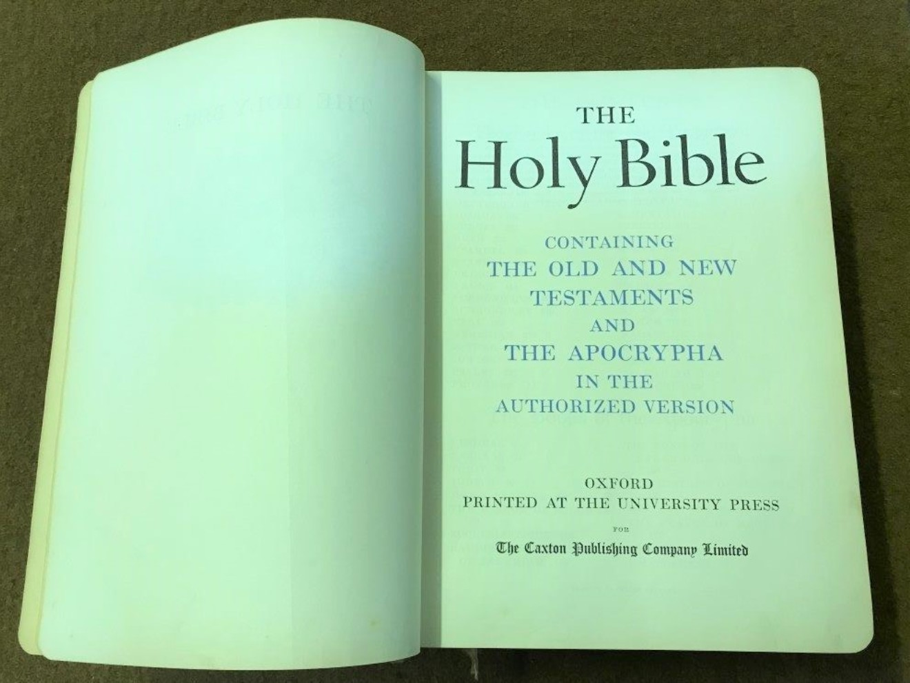 Vintage Family Holy Bible Containing the Old and New Testaments, The Apocrypha and 48 Colour Plates