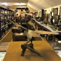 Large Cast Brass Eagle on Log
