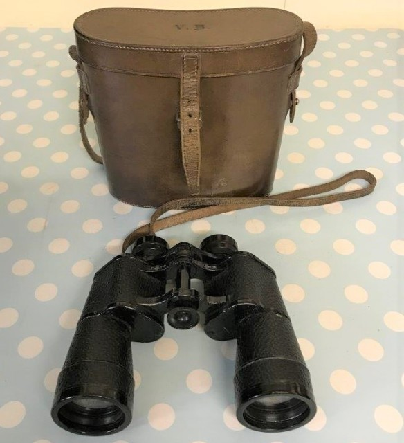 Binoculars in Leather Case